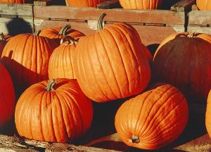 Pumpkins - not just for Thanksgiving (or Hallowe'en)!